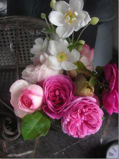 fragranc, pink roses, color, texas, floral arrangements, flowers, garden, peonies, anemones