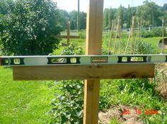 building a raspberry trellis