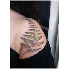 Delicate fern - I know this will blurr badly in a few years because tbe leaves lack outlines that are strong enough, but I think it is pretty now.