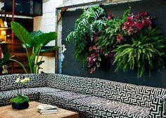 Indoor vertical garden.