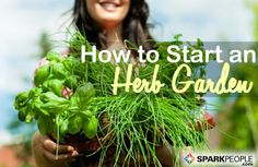 How to Grow Your Own Herbs for #Cooking in Your Own Backyard! #garden #gardening | via @SparkPeople