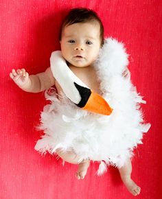 Our child will be a baby swan. diy costumes, halloween costumes, babi bjork, dresses, baby costumes, bjorkswan, bjork swan, swan dress, kid