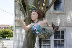 Mermaids in Beaufort, S.C.