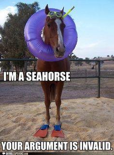 You go Seahorse