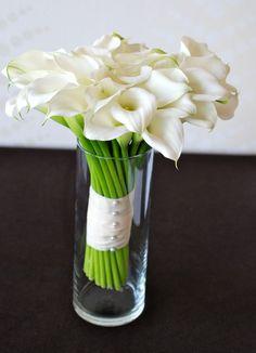 Arum lillies - my favourites