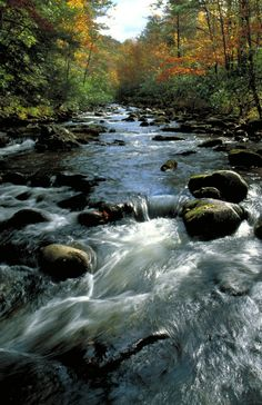 Great Smoky Mountains rivers