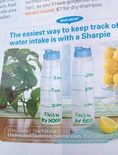 Hydration plan!