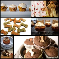 Cupcakes and Pupcakes - Delicious treat recipes to bake for your dog.