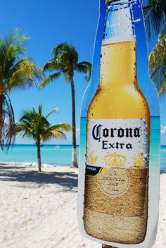 Not only is Isla home to white beaches, crystal blue water, great food and friendly locals....it also has the más grandes bottles of cervezas that you have ever seen. : )