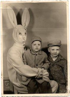 scary bunny #1
