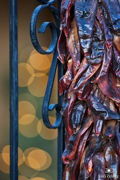 New Mexico Chiles - Jim Crotty