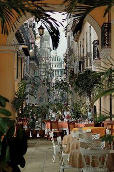 Cafe  Old Havana  Cuba