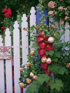 Cottage Garden Fence