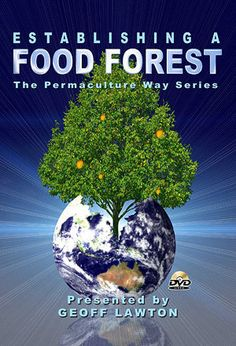 Food Forest DVD