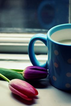 Coffee .... Tulips are just a bonus!