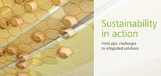 Learn how Autodesk demonstrates an ongoing commitment to sustainability.