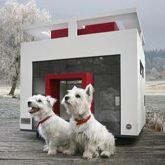 Bauhaus Dog Mansion by Cubix
