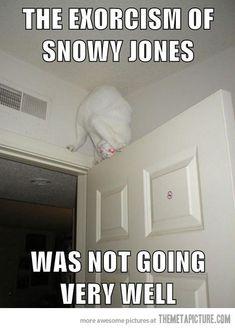 Hahaha! Hilarious !