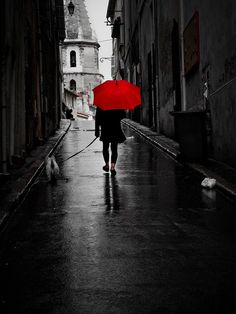 umbrellas, red photographi, art, black white and red photos, red umbrella, dog, white black and red pictures, color photography, rain