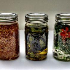 Making Herbal Oils and Vinegars