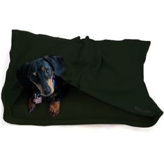 Want this for Oscar.  You use your own pillow so it will smell like you!