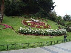 Reloj de flores Vina Del Mar - Chile