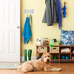 The Home-Organizing Tips You Need to Know