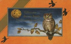 Charming vintage Halloween postcard, circa 1918. #vintage #Halloween #Edwardian #postcards #owls