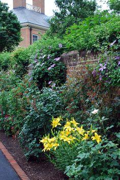 rose garden, lily, English garden, clematis