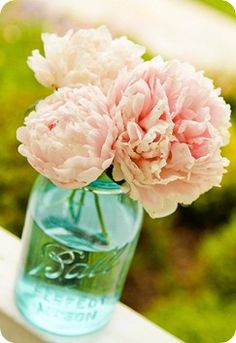bell jars, ball jars, blue mason jars, pink flowers, color, pale pink, mason jar centerpieces, fresh flowers, pink peonies