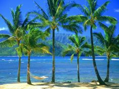 Already pinned a picture of Hawaii but I just love it and want to go back :)