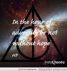 harry potter essays mugglenet Harry potter for muggles 16 likes  movies, books, podcast, social network, crafts, essays and more talk about harry potter and the half-blood  mugglenet com.