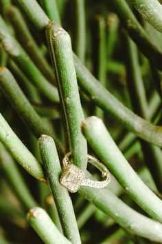 emerald cut diamond, photo by Christopher Nolan Photography http://ruffledblog.com/farm-inspired-colorado-wedding #rings #engagementring #diamond