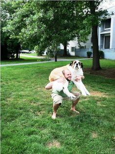 dog wod :O)
