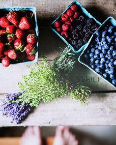 Frutillas, arandanos y lavanda