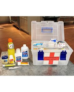 Emergency First Aid Kit for Dogs - good preparedness for home and travel
