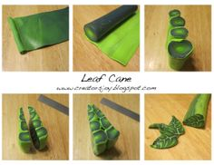 Meg Newberg's leaf cane