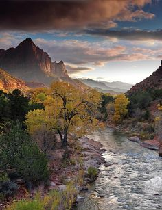 ✮ Utah - Virgin River and sandstone cliffs in autumn in Zion National Park at sunset