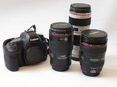 7 Reasons Why Prime Lenses are Better Than Zoom Lenses to Improve Your Photography