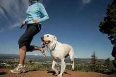Your dog could be your best running partner! See which workout fits best for your pooch. Now I just need a dog of my own