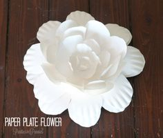 How to Create a Flower from a Paper Plate