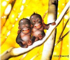 Smiling Monkeys