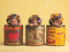 canister babies