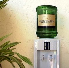 champagne > water