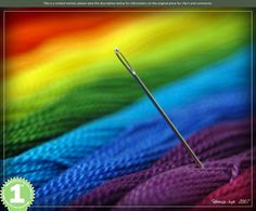 Colorful – 1st Place by Macrophoto