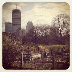 favorit place, area place, victory garden, victori garden