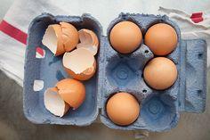 leftov egg, egg whites