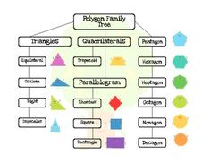 2D Shape Poster: Polygon Family Tree {Flow Chart FREEBIE}