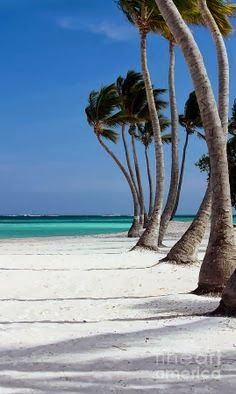 Punta Cana, Dominican Republic.  | See More