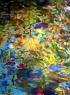 """leaves in water: Ross Barbera, """"South Shore Pond: Late October,"""" Acrylic on Canvas, 62"""" x 46"""", 2009"""